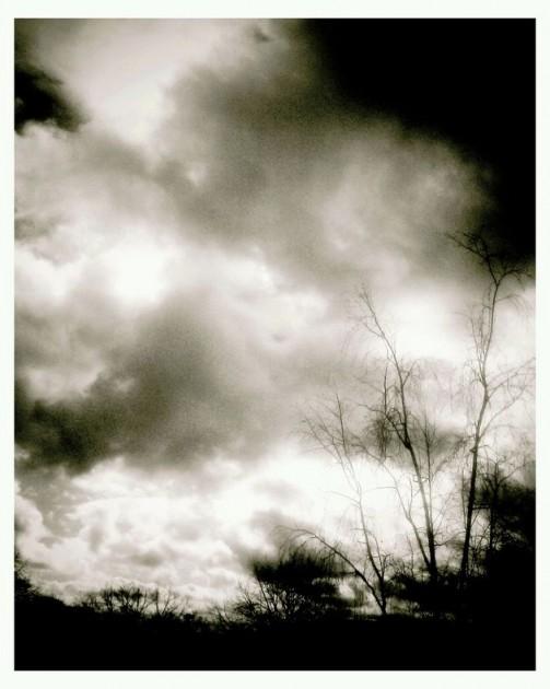 2011-02-14-14-00-41-823 copy 1