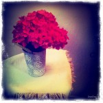 Nature morte, hortensia rouge