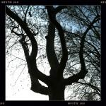 un samedi dans les jardins de Bercy